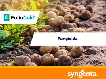 Fungicida Folio® Gold 440 SC