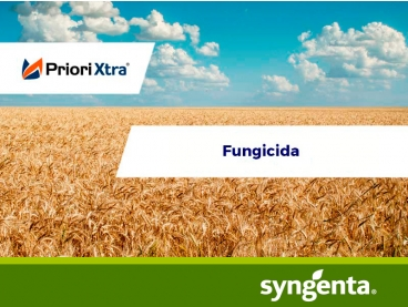 Fungicida Priori Xtra®