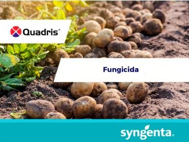 Fungicida Quadris®