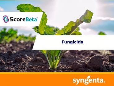 Fungicida Score® Beta 475 EC
