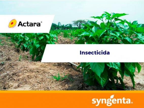 Insecticida Actara® 25 WG
