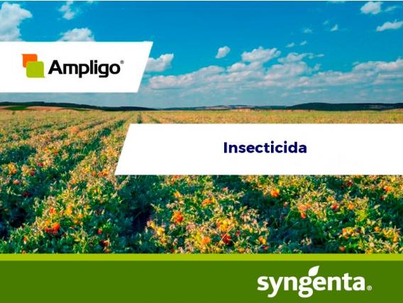 Insecticida Ampligo® 150