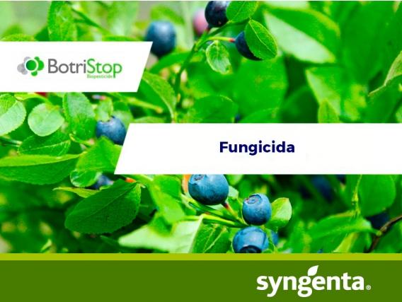 Fungicida BotriStop®