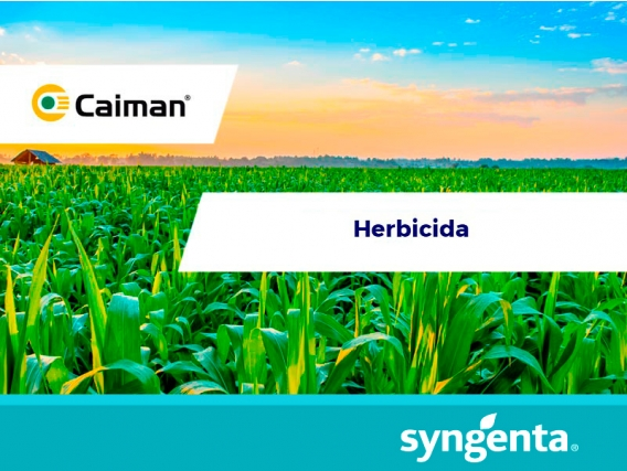 Herbicida Caiman®70 WG