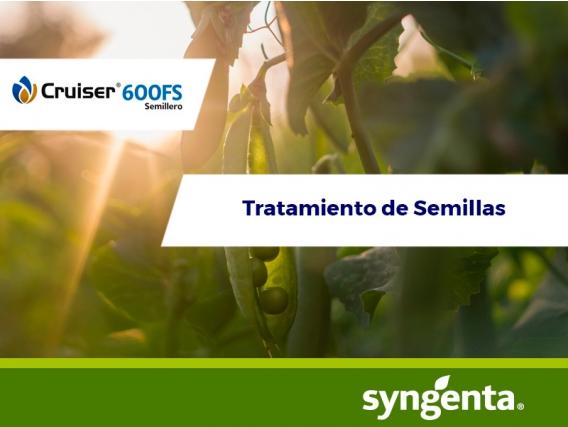 Insecticida Cruiser® 600 FS Semillero