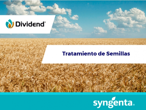 Fungicida Dividend® 150 FS