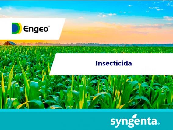 Insecticida Engeo® 247 ZC