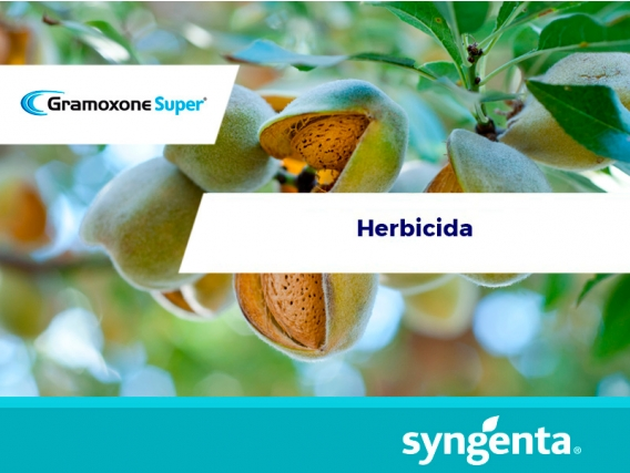 Herbicida Gramoxone Super