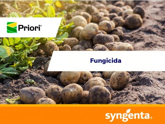 Fungicida Priori®