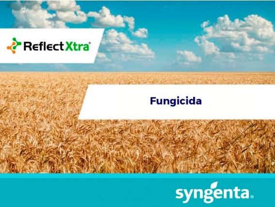Fungicida Reflect® Xtra