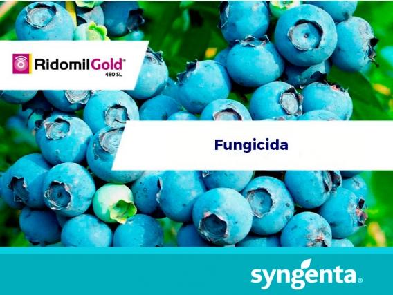 Fungicida Ridomil® Gold 480 SL