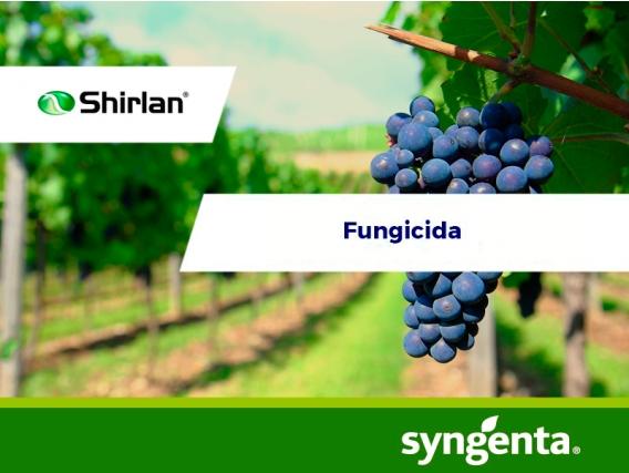 Fungicida Shirlan® 500 SC