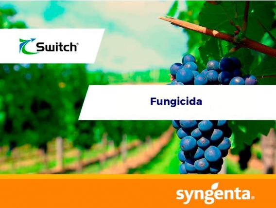 Fungicida Switch®  62.5 WG