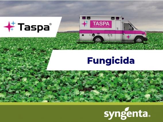 Fungicida Taspa® 500 EC