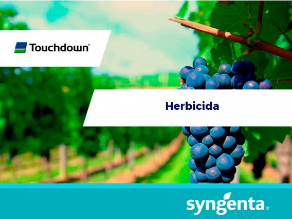 Herbicida Touchdown® IQ 500