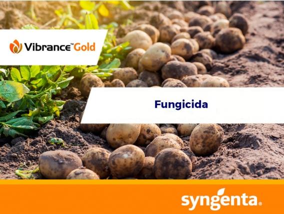 Fungicida Vibrance® Gold